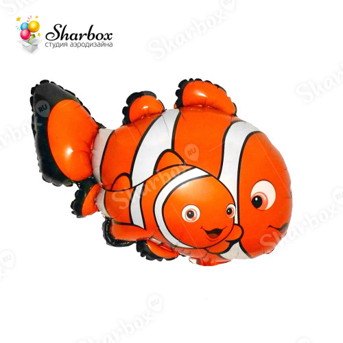 Воздушный шар Рыбка-клоун с гелием